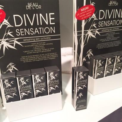 divine_display.jpg